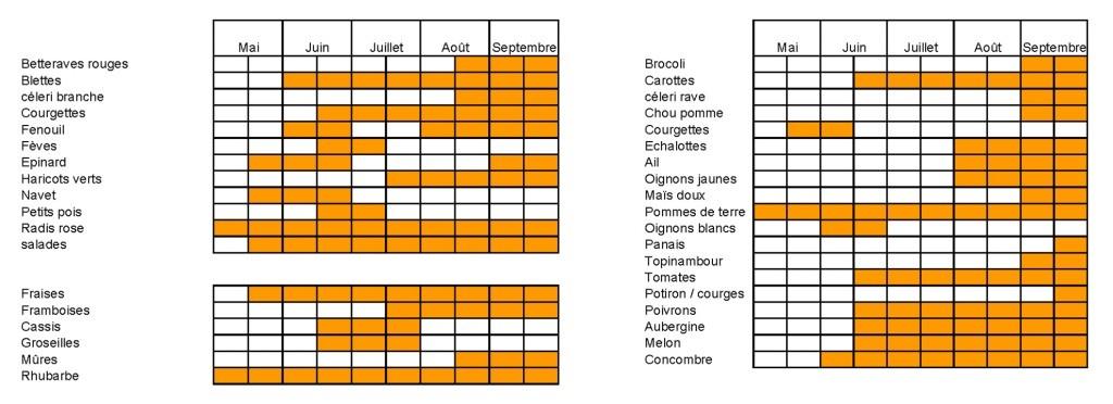 Calendrier Des Legumes.Calendrier Des Fruits Et Legumes Bio Proposes Les Jardins